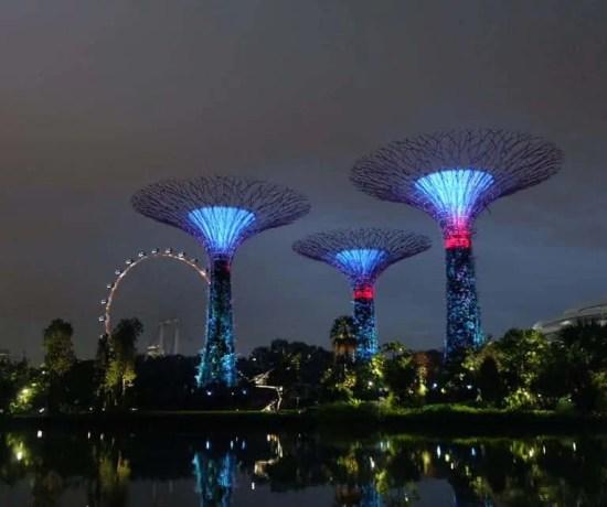 Gardens by the Bay Proposal, Singapore, Proposal