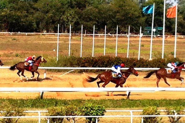 Horse races khon kaen things to do