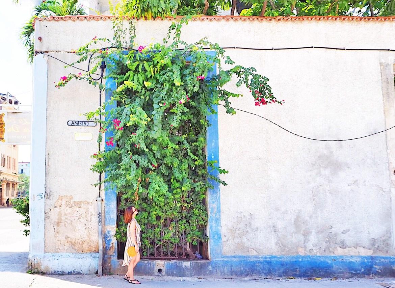d1cca954 d0cc 40f8 acd0 429dbfda3425 - Old Habana - 街全体が世界遺産 色が溢れるハバナ旧市街散歩で出会った風景