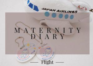 a39f98c2 c3f5 4fd2 92e3 7cdd3fc7988f - ANA JAL妊娠中の飛行機搭乗