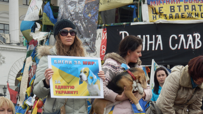, Beagles for Peace: Puppy Protest, The Travel Bug Bite