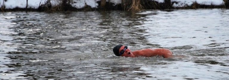, THE ANNUAL POLAR BEAR SWIM, The Travel Bug Bite