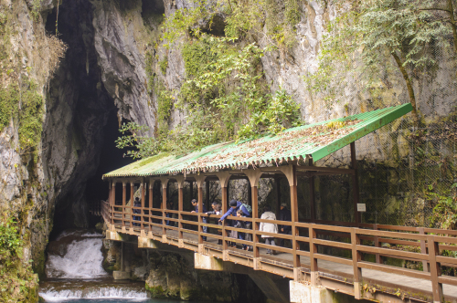 Akiyoshidai Cave – Japan Travel (Guest Post)