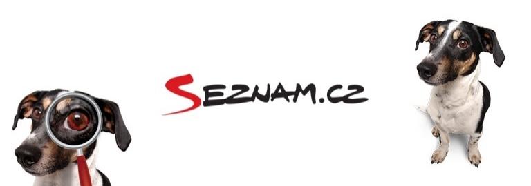 , SEZNAM.CZ, THE CZECH SYNONYM FOR INTERNET, The Travel Bug Bite, The Travel Bug Bite