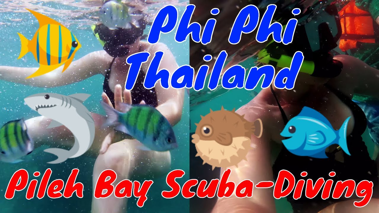 , Scuba-Diving at Pileh Bay: Phi Phi, Thailand 2018, The Travel Bug Bite