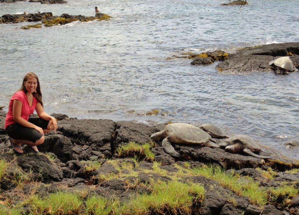 Hawaii, Home in Hilo – Hawaii Travel, The Travel Bug Bite