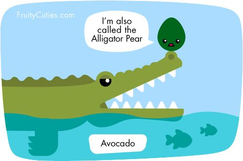 Avocado, The Avocado Was Once the Alligator Pear: Weird Food Facts, The Travel Bug Bite