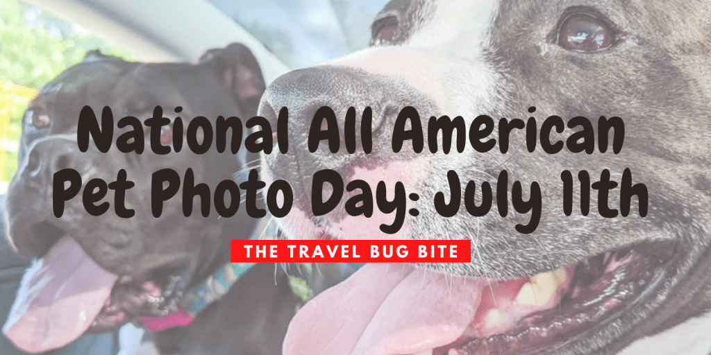 National All American Pet Photo Day, National All American Pet Photo Day: July 11th, The Travel Bug Bite