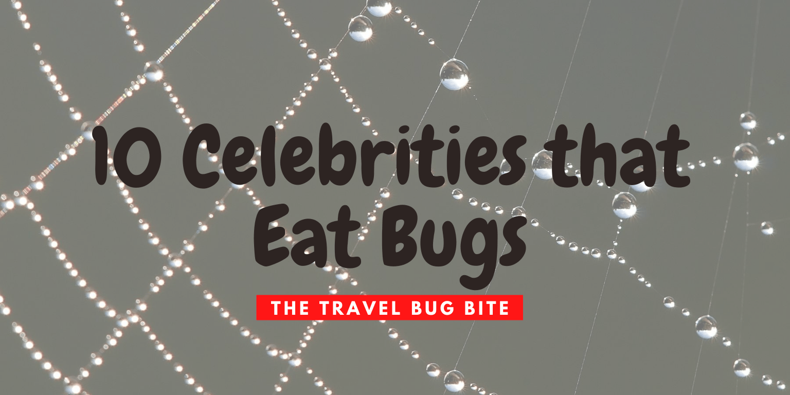 Celebrities that eat bugs, 10 Celebrities that Eat Bugs, The Travel Bug Bite