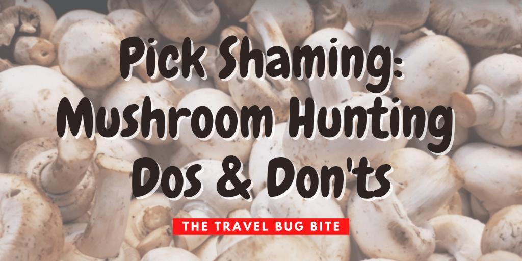 Pick shaming, Pick Shaming: Mushroom Hunting Dos & Don'ts, The Travel Bug Bite
