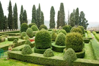 Topiary at The Kitchens at Badia a Passignano