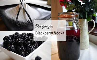 Recipe for Blackberry Vodka