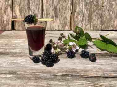 Simple recipe for Blackberry Vodka