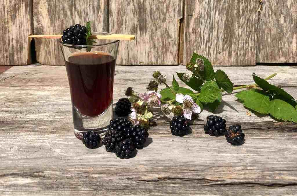 Simple recipe for Blackberry Vodka