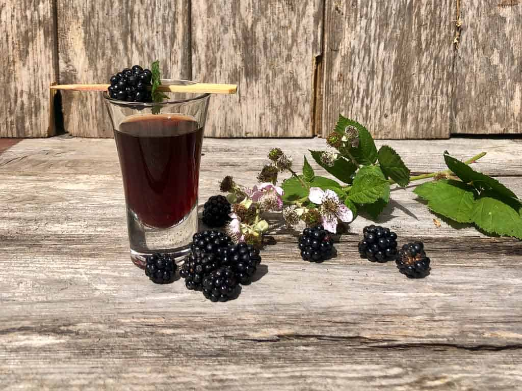 Blackberry vodka recipe