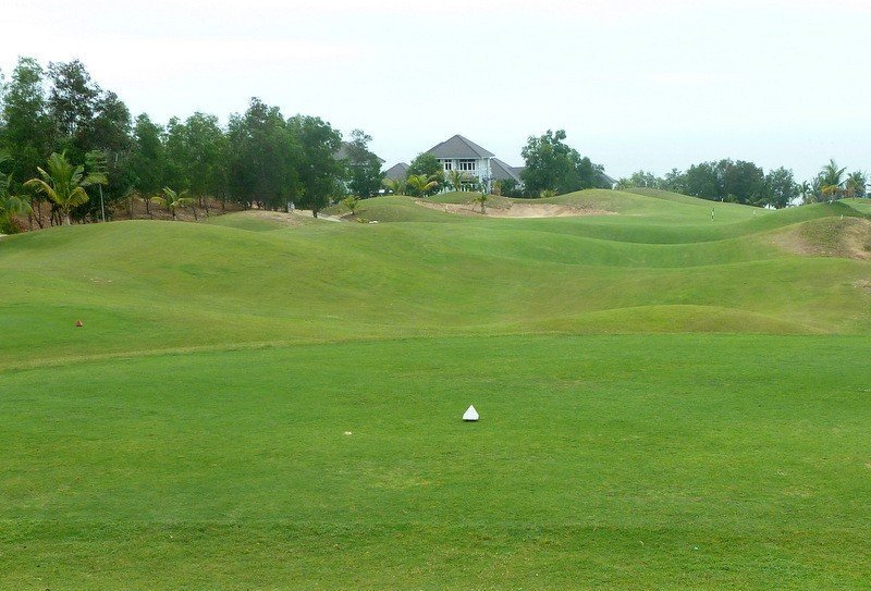 Golf Tee Green Fairway