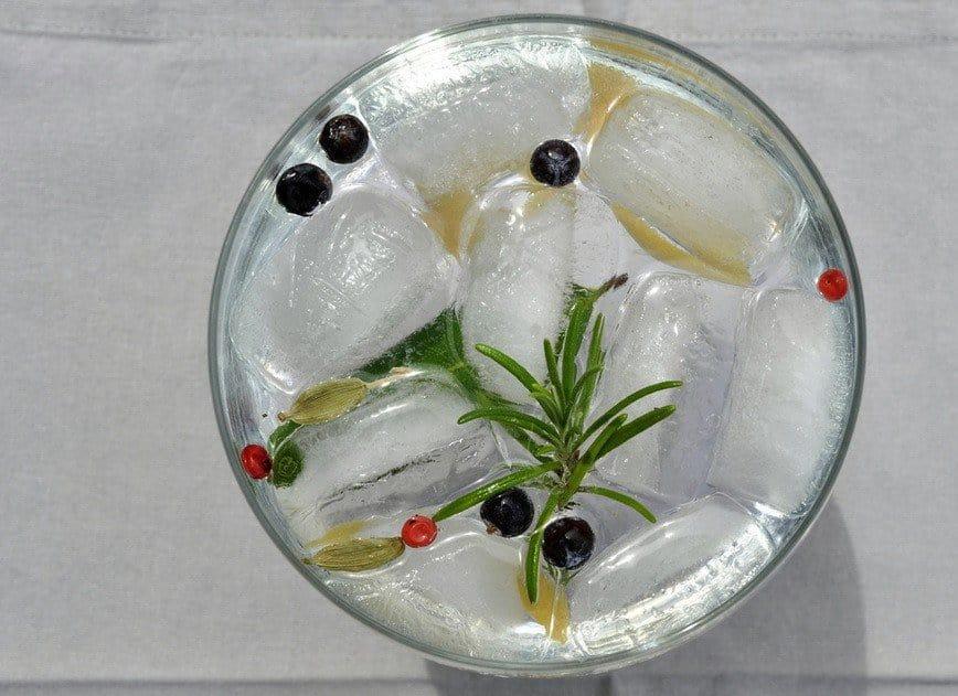 gin-and-tonic-botanicals