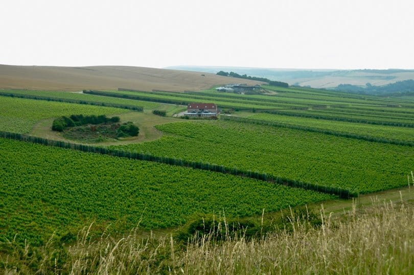 rathfinny-wine-estate