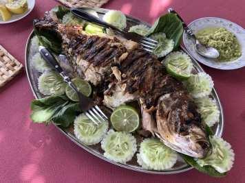 Food-in-Rodrigues
