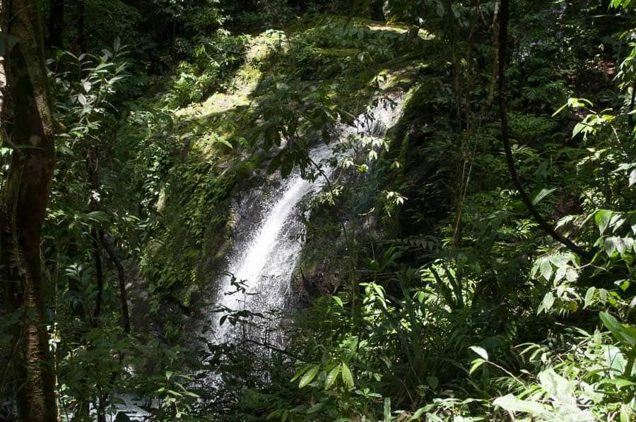 Waterfall in Manuel Antonio National Park, Costa Rica
