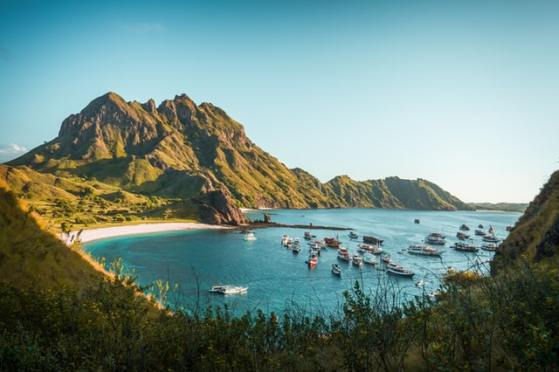 where-to-see-wildlife-in-indonesia