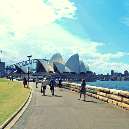 A view of the Sydney opera house and Sydney harbour bridge taken from inside the botanical gardens