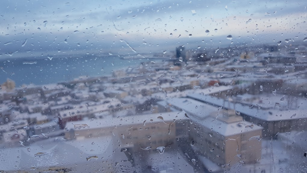 A view of the city of Reykjavik from the top of Hallgrímskirkja cathedral