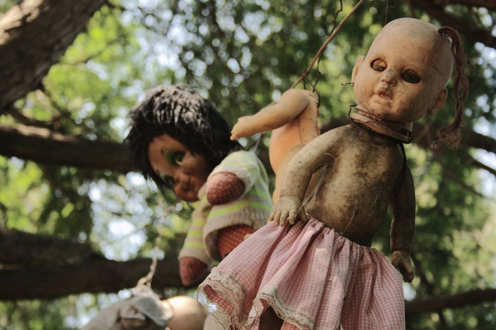 Dirty dolls hanging from trees
