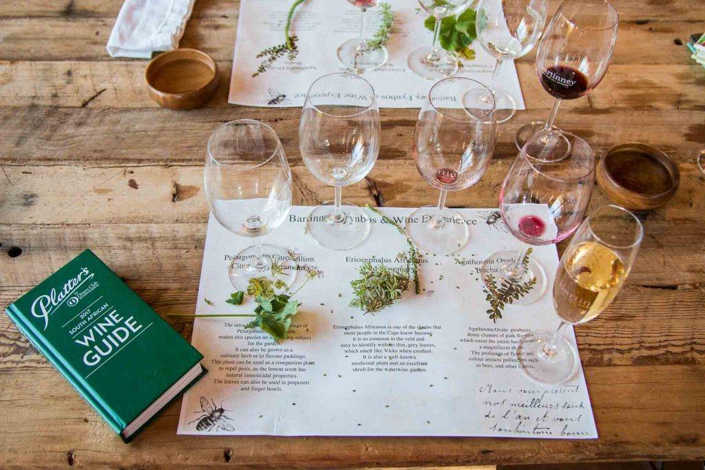 Winetasting Banhoek Valley Bartinney Winery-2