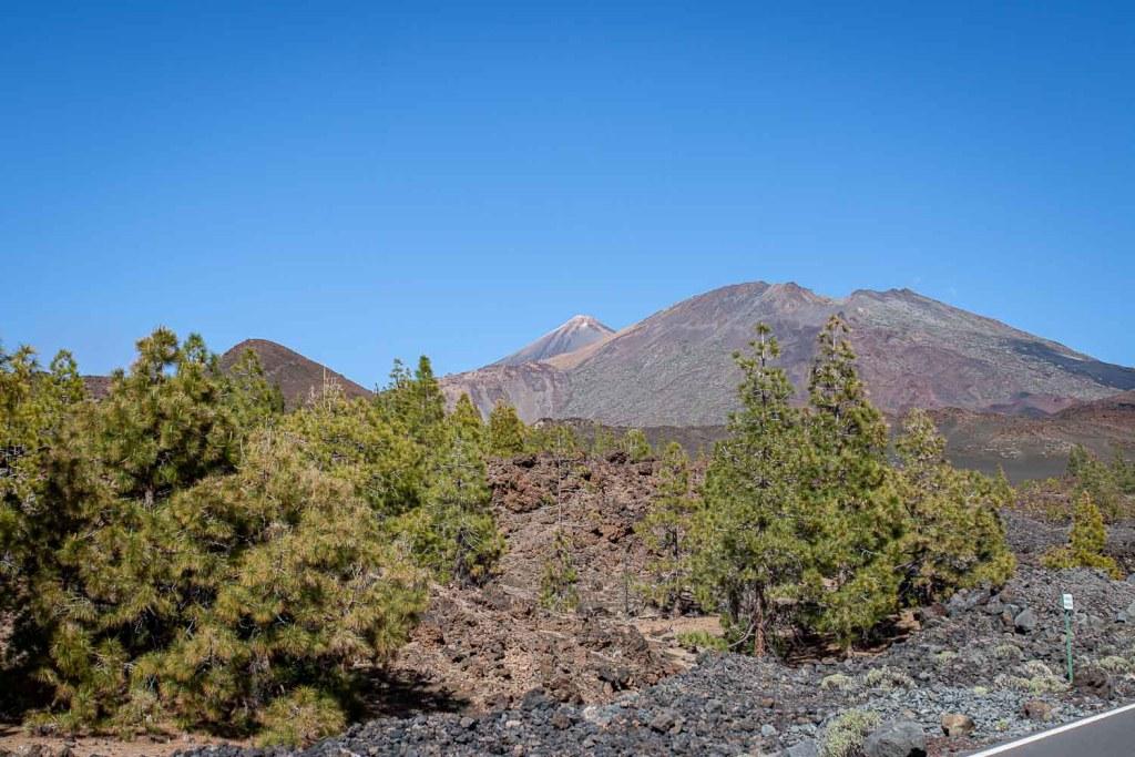 Teide Nationalpar Teneriffa wandern-4