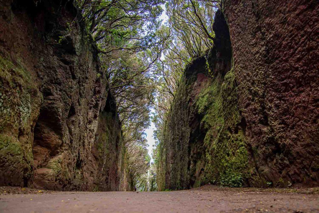 Teneriffa Anaga Nationalpark wandern