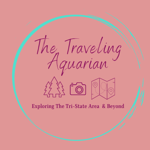 The Traveling Aquarian Logo