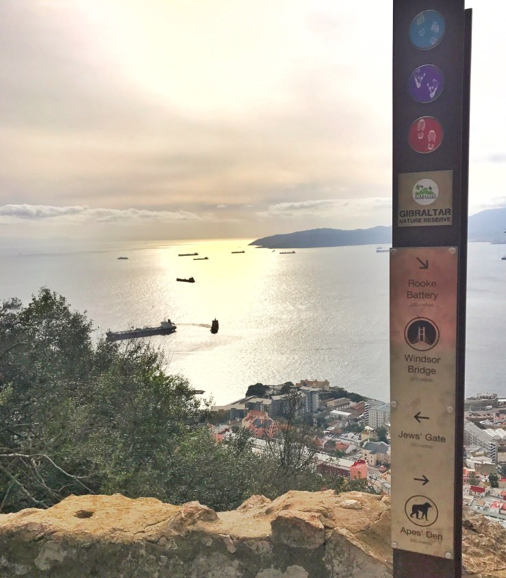 A peak of the port on the hike up Gibraltar