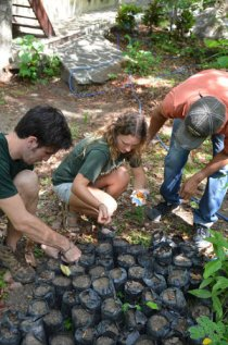 Las Olas provides support in Costa Rica and Nicaragua