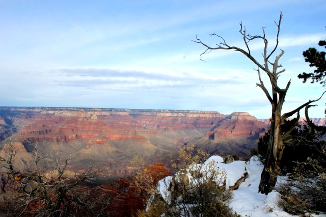 My favorite picture at Mather Point.
