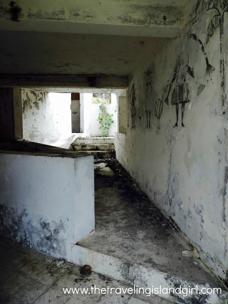 Remains of a party villa