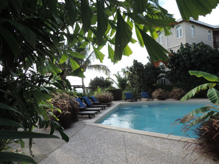 Lush gardens with swimming pool in the middle