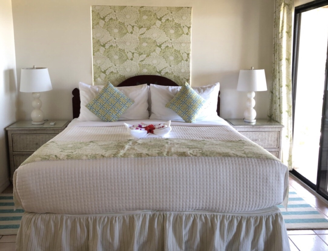 Hotel Review: The Mount Nevis Hotel