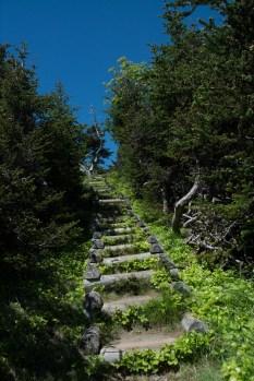 skerwink-trail-10-of-31