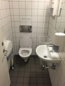 A good thing about European bathrooms is there aren't large gaps in between the stalls!
