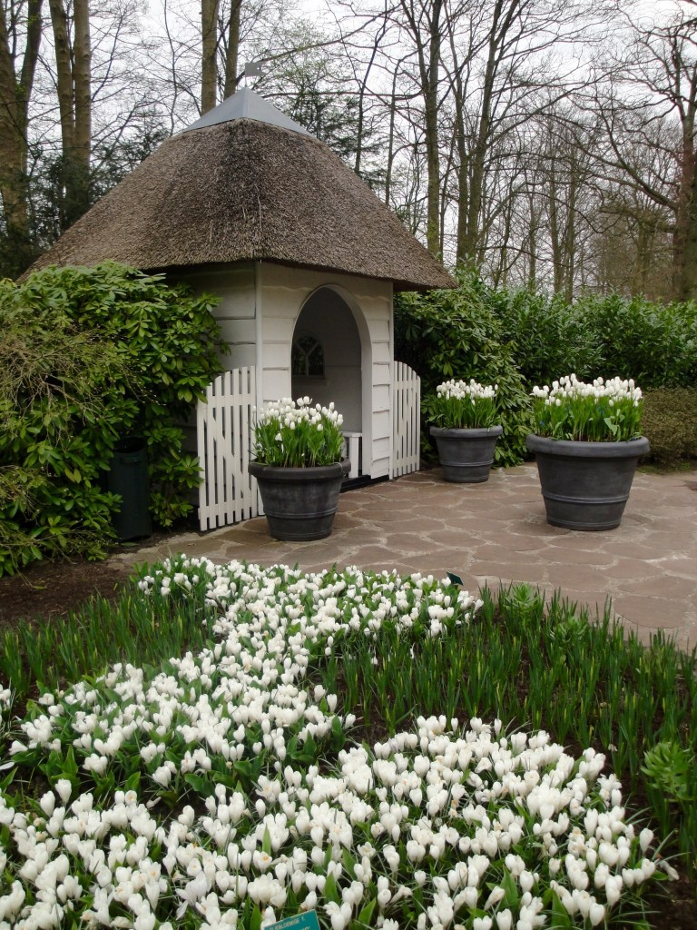 Guide to Visting the Keukenhof - The Traveling Storygirl