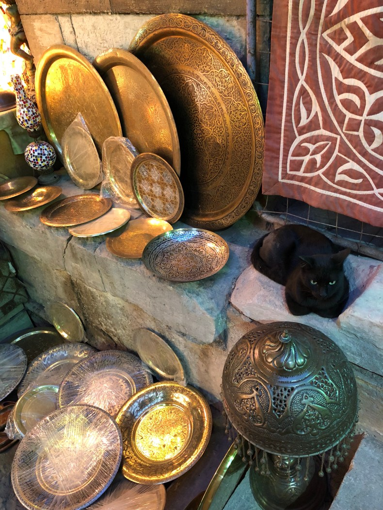 Even the cat was enjoying the souk!