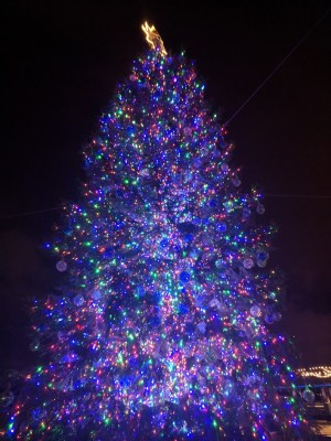 Things To Do In Washington Dc At Christmas The Traveling Tour Guide