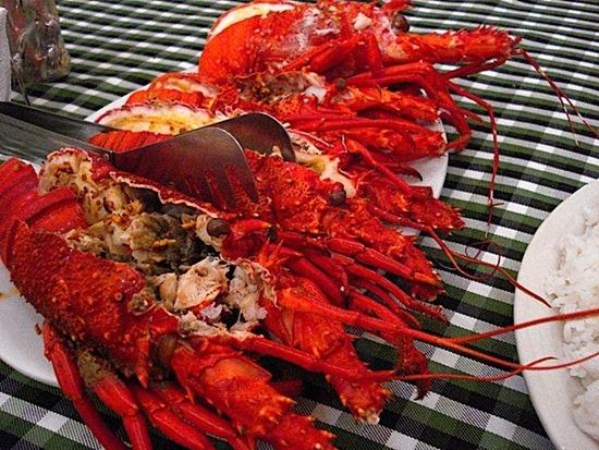 Fresh steamed lobster at Batanes Resort
