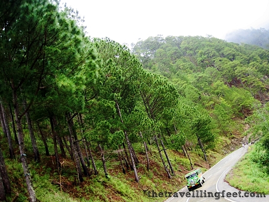 The road to Bontoc, Mt. Province