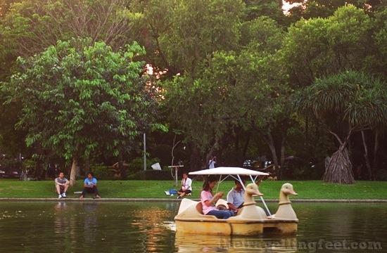 boat paddling at Chatuchak Park