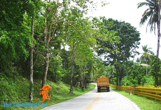 road to General Luna, Siargao