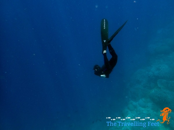Johnn freediving at the Apo Island reef