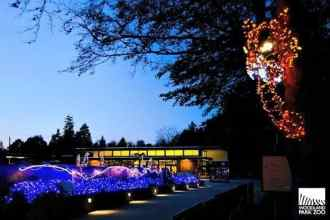 Grab your favorite hot beverage and the kids; it's time to head south to Seattle and explore all the Christmas fun they have to offer this holiday season. (via thetravellingmom.ca)