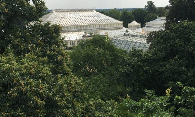 I Kew Gardens: un angolo di paradiso a Londra